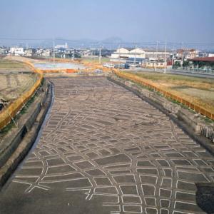 加古川町大野探検(4) 弥生時代の水田跡
