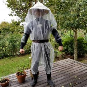 10月17日 スズメバチの駆除