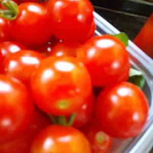 透明トマト・ジュースとクリスタル・メアリー