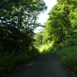 夏の山歩き