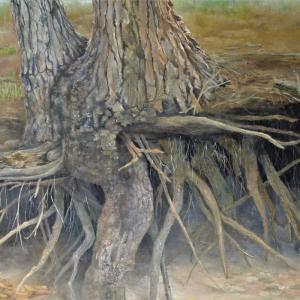 生き続ける樹