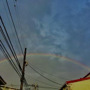 虹のこと。