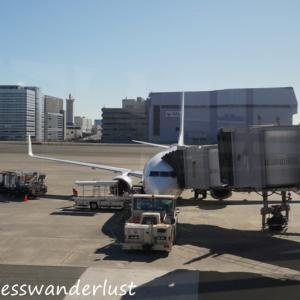 どこかにマイルで徳島に行ってきた! JL457・JL462搭乗記