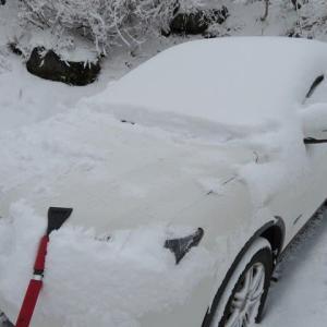 裏磐梯に!またまた、雪が舞う!