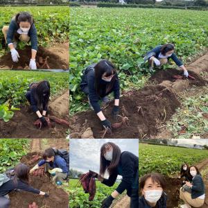 野菜果物研修・第1回 『さつまいも』in 川越