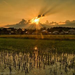 みちのく夕陽の田園風景
