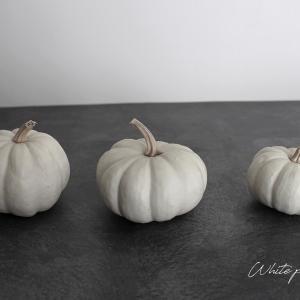 白いかぼちゃのシンプルディスプレイ!大人モノトーンなハロウィン