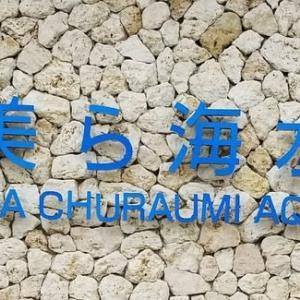 沖縄旅行記(3) 沖縄美ら海水族館 ~ い~やさぁ~さぁ♪てぃ~り、した~り♪ ~