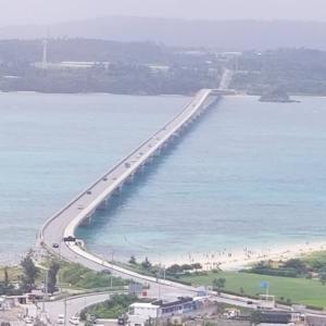 沖縄旅行記(5) 古宇利大橋 ~ 白く霞んだ灰色ブルーの海を見ながらノンアルコールタワービール ~
