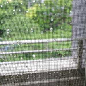 雨の日の朝の、窓掃除