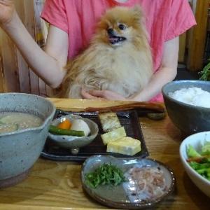 伊豆高原和食処にいルネ