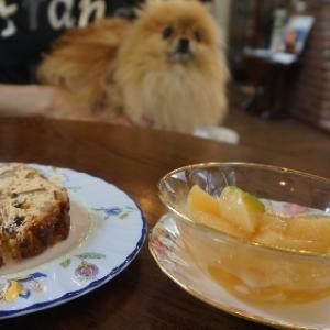 暑い清里のカフェにいルネ