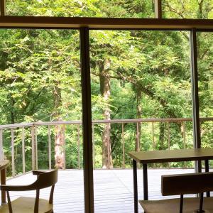自然あふれるカフェへプチドライブ♪