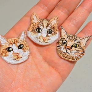 小さな猫ちゃんたち