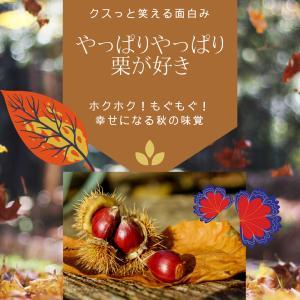 やっぱりやっぱり栗が好き~秋の夜長のお楽しみ