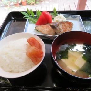 お昼は、新米でプチ贅沢☆