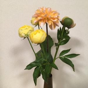 今週の花はこれ
