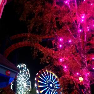 リンナンマキ遊園地で光のカーニバル