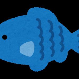【速報】一番美味い魚、決まるwwwwwwwwwwwwwwww