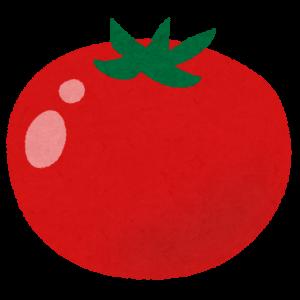 ぼく「給食でトマト出た…食べられないよ」ババア教師「死んでも食え!食うまで昼休みなし!」←これwwwwwwww
