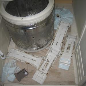 洗濯機クリーニング、分解しないと意味がありません