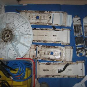 洗濯機の見えない部分に潜むカビや汚物
