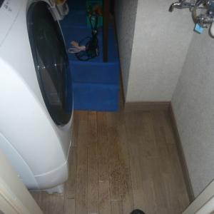 ドラム式洗濯機(ドラム洗浄編)