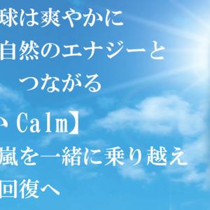 緊急新作アンシェントメモリーオイル【おだやかCalm】