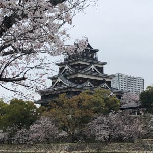 祈りオイルもうすぐ*広島城と桜*