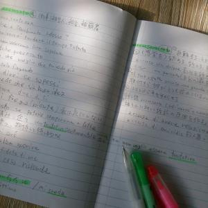 私の「楽しい」イタリア語勉強法