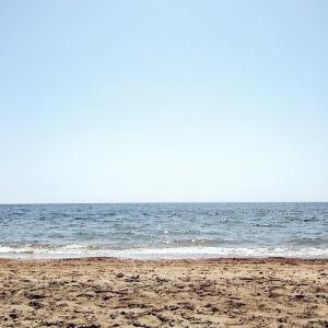 海とバーベキューの休日