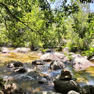 コルシカ島のコルテでトレッキングと川辺のピクニック