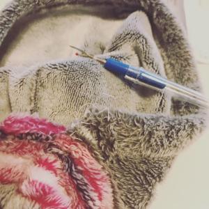 手作りプロジェクト(縫物)
