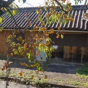 井笠鉄道小平井駅
