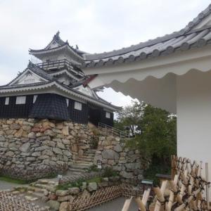 徳川家康 (浜松城)