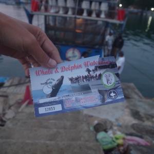 アジア周遊旅行 第三章 〜Whale & Dolphin watching tour〜