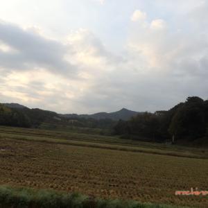 11/03 加茂から斐川へ(斐川町) 04