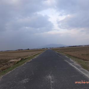 1/3 築地松と宍道湖(また築地松) 05