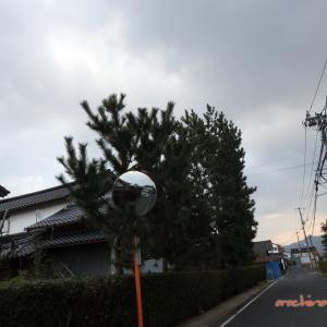 1/3 築地松と宍道湖(国道9号線へ) 09