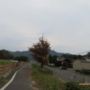 10/4 大社から宍道湖へ(稲佐の浜から) 03