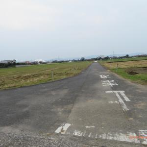 10/4 大社から宍道湖へ(進路変更) 08