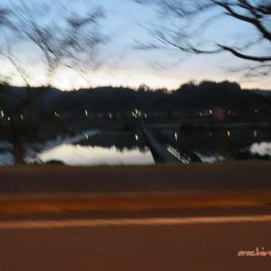 11/1 宍道湖へ(朝日が) 01