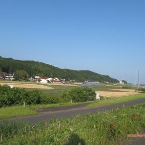5/23 大社から(神戸川堤防) 07