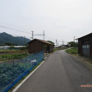 6/6 大社から平田(うろうろ) 09