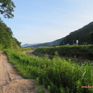 7/25 大社へ(神戸川堤防) 03