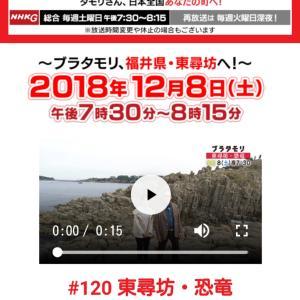 NHKブラタモリ 福井東尋坊と恐竜編
