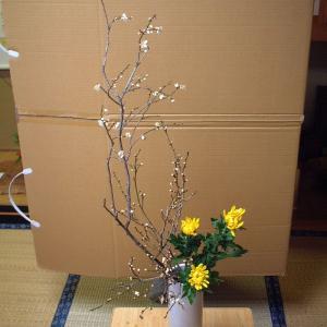 花器にちょうどよいマッスの大きさは?