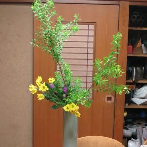 花型と自由花の境目を攻める