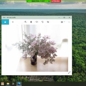 オンラインお稽古に便利なZoom機能 (Windows)