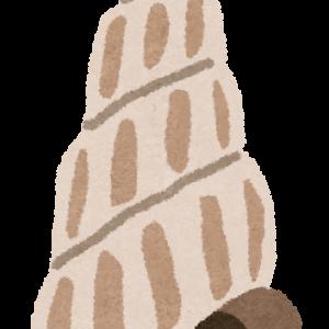 巻貝の巻く方向